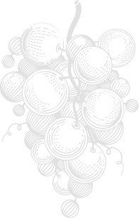 Vineyard-1-a3